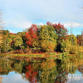 Sandra Huston - Sabattus River in Fall