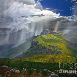 Jerry Bokowski - Sabino Canyon Storm