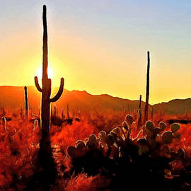 Dr Bob Johnston - Saguaro National Park Sunset