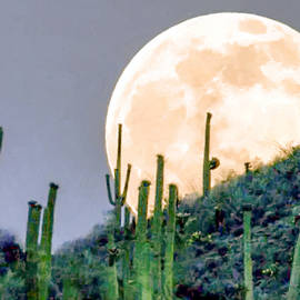 Dr Bob Johnston - Saguaro Super Moon