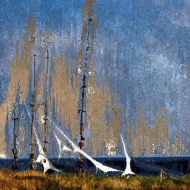 Arne Hansen - Sailing