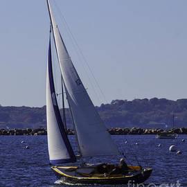 Joe Geraci - Sailing Stonington Harbor