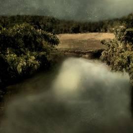RC deWinter - Salt Marsh Shimmer