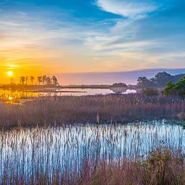 Steven Ainsworth - Salt Marsh Sunrise II