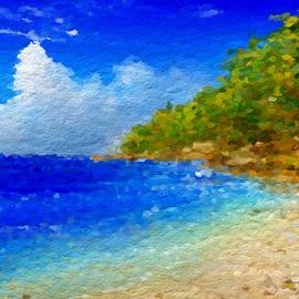 Anthony Fishburne - Salt water beach