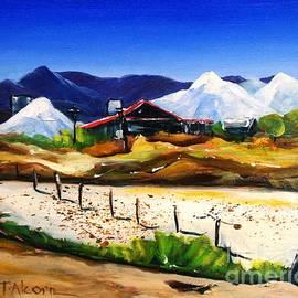 Therese Alcorn - Salt Works - Port Alma