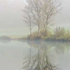 Stephen Anthony - Saltmarsh Pond in Fog 1