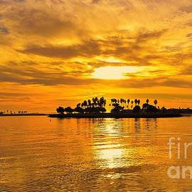 Jasna Gopic - San Diego Golden Sky by Jasna Gopic