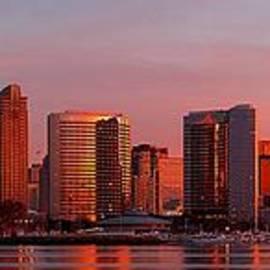 Blackwater Studio - San Diego Skyline