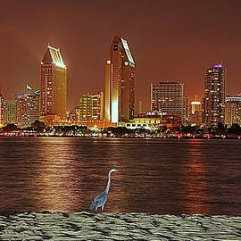 Matt Helm - San Diego Skyline with Blue Heron