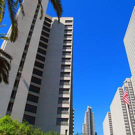 Tina M Wenger - San Francisco Highrise