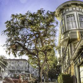 Angelia Bella Photography - San Francisco - Sidewalks