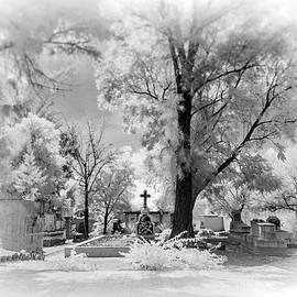 San Jose de Dios Cemetery - Sean Foster