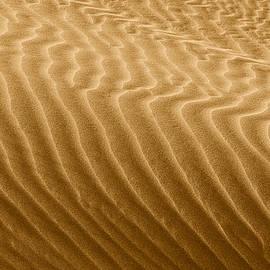 Christine Till - Sand Dune Mojave Desert California