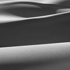 About Light  Images - Sand Shadows