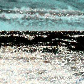 Jacquie King - Sand Shell Sea Shore