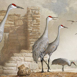 R christopher Vest - Sandhill Cranes At Hovenweep