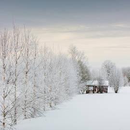 Jukka Heinovirta - Sauna Cabin By The River