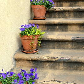 Linda Covino - Savannah Stairs in February