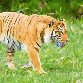 Judy Kay - Save the Tiger