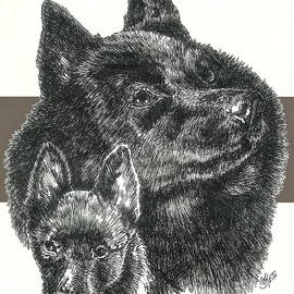 Barbara Keith - Schipperke Father and Son