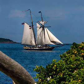 Jeff Folger - Schooner sailing out of the harbor