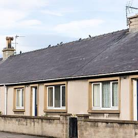 Scottish bungalows - Tom Gowanlock