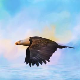 Jai Johnson - Sea Coasting Bald Eagle Art