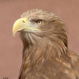 Roy McPeak - Sea Eagle