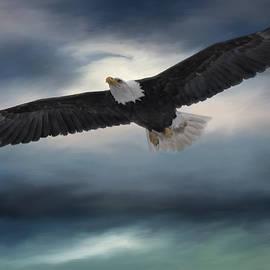 Jordan Blackstone - Sea To Sky - Eagle Art