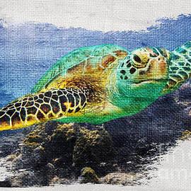 Sea Turtle on Canvas - Jon Neidert