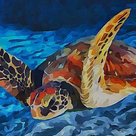 Sergey Lukashin -  Sea turtle