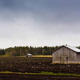 Jukka Heinovirta - Seagulls And Barn Houses