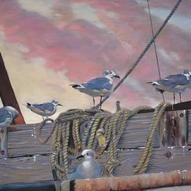 Christopher Reid - Seagull