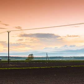 Jukka Heinovirta - Seagulls On The Fields
