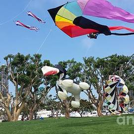 Jasna Gopic - Seaport Village Kite Exhibits