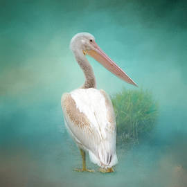 Lynn Bauer - Seaside Pelican