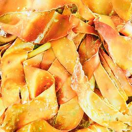 Seaweed - Tom Gowanlock