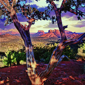 Allen Beatty - Sedona # 48 - Courthouse and Cathedral Rocks