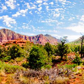John White - Sedona Panorama