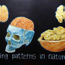 Lazaro Hurtado - Seeing patterns in nature