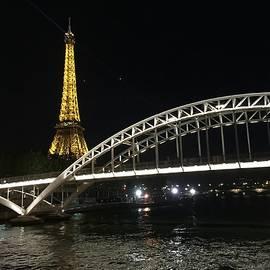 Nancy Shen - Seine River at night