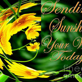 Gardening Perfection - Sending Sunshine