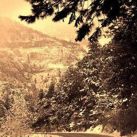 Larry Weingartner - Sepia Down The Mountain