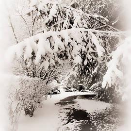 Sepia Winter - Jessica Jenney