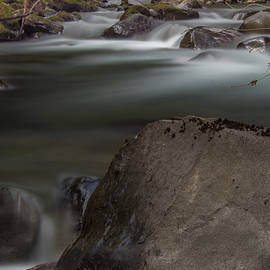 Michele James - Serene Dog Creek