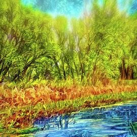 Serene Green Pond