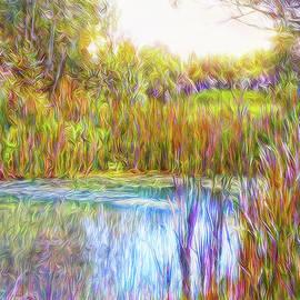 Joel Bruce Wallach - Serenity Reflections
