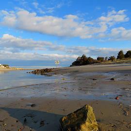 Dianne Cowen - Sesuit Harbor at Low Tide