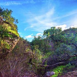 Lynn Bauer - Setting Sun on the Las Llajas Trail